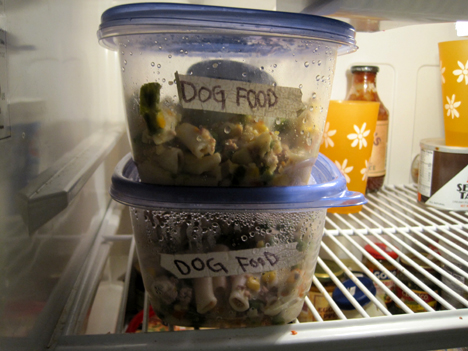 homemade dog food storage