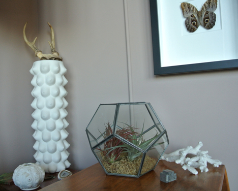 impress your friends and transform your home image with the easiest terrarium project ever