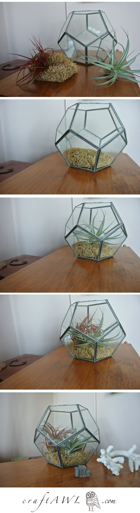 update your home and impress your friends with this step by step photo process for making the easiest terrarium ever